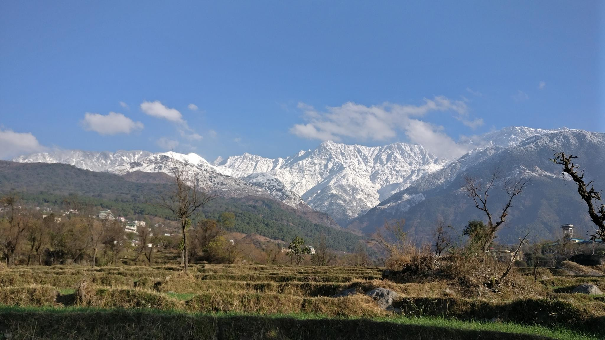 <h2>The Ballu </h2><p>View Of The Dhauladhar's From The Back Yard</p><a title='Read more' href='#'></a>